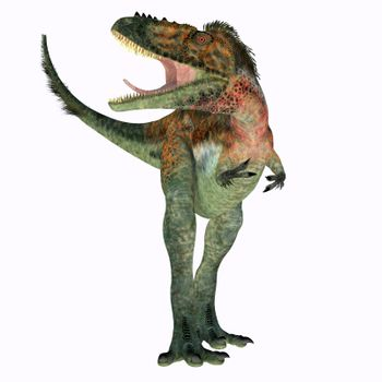 Alioramus remotus was a theropod carnivorous dinosaur that lived Mongolia during the Cretaceous Period.