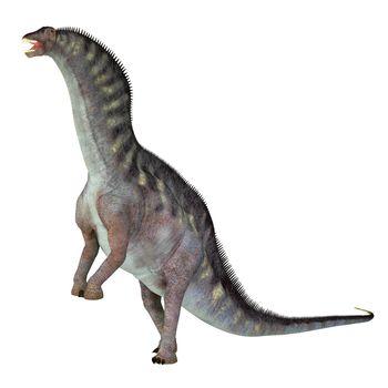 Amargasaurus was a sauropod herbivorous dinosaur that lived in Argentina during the Cretaceous Period.