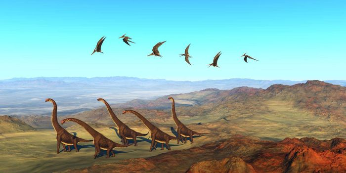 A herd of Giraffatitan dinosaurs walk on their yearly migration over an African extinct volcano as a flock of Pteranodons fly over them.