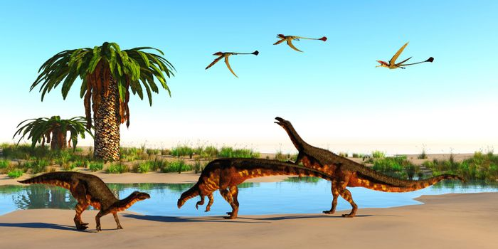 Plateosaurus dinosaurs, Eudimorphodon reptiles and Bjuvia trees surround a watering hole during the Triassic period.