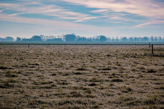 frozen land cold morning in the Netherlands at the agriculture land Noordoostpolder Flevoland