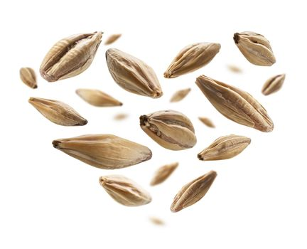 Barley malt grains in the shape of a heart on a white background