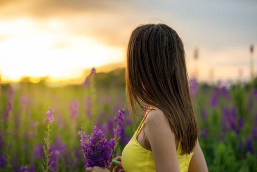 Beautiful girl among the lupine