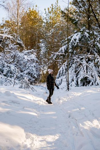 woman mid age walking in the snow, snow covered hills of the Sallandse Heuvelrug, Landscapes of the Holterberg near Holten, The Netherlands. Winter in the Netherlands