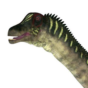 The Titanosaur herbivorous sauropod dinosaur Antarctosaurus lived in South America during the Cretaceous Period.
