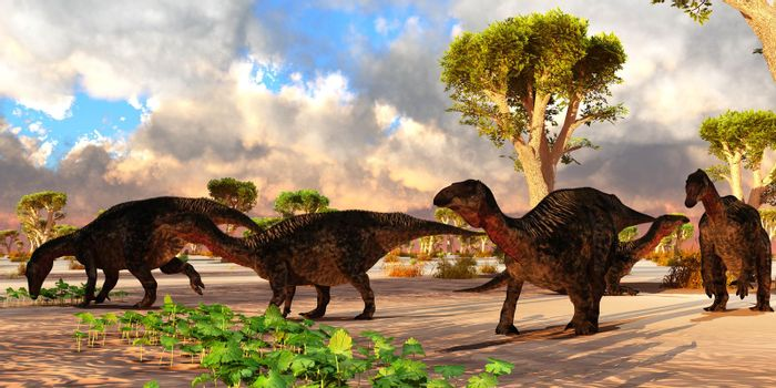 A cloudy day finds a Lurdusaurus dinosaur herd resting and eating vegetation in Africa during the Cretaceous Period.