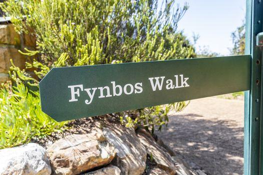 Fynbos Walk green turquoise sign in Kirstenbosch, Cape Town, South Africa.