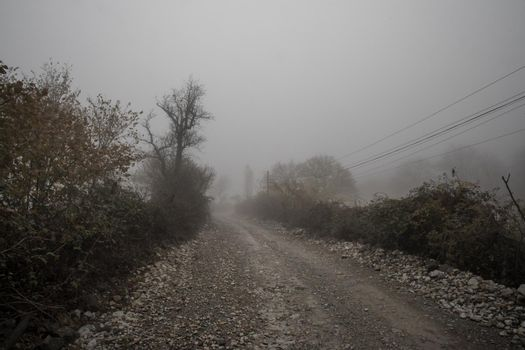 Landscape with beautiful fog in forest on hill or Trail through a mysterious winter forest with autumn leaves on the ground. Road through a winter forest. Magical atmosphere. Azerbaijan nature