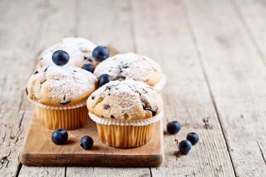 Four homemade fresh muffins with blueberries on rustic wooden table background. With copy space.