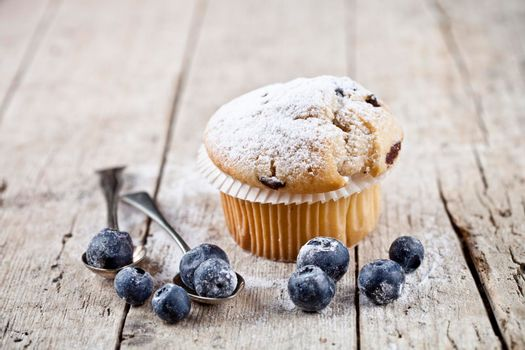 Homemade fresh muffin with sugar powder, vintage spoons and blueberries on on rustic wooden table background.