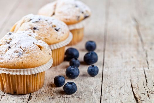 Three fresh baked homemade muffins with blueberries on rustic wooden table background. With copy space.