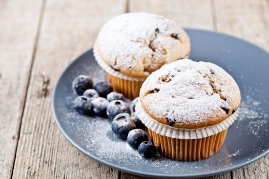 Homemade fresh muffins with sugar powder and blueberries on ceramic plate closeup on rustic wooden table background.