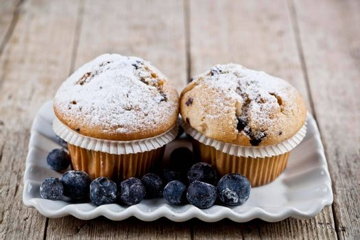 Homemade fresh muffins with sugar powder and blueberries on ceramic plate on rustic wooden table background.