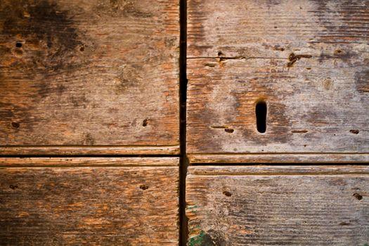 Antique wooden grunge door texture.