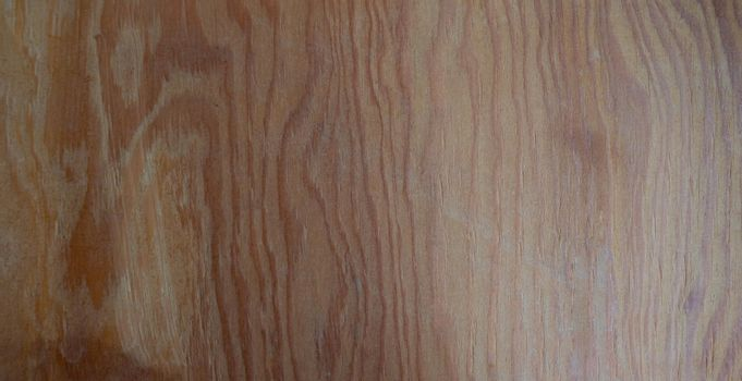 The texture of the wood. background surface with a natural pattern. Space for text.