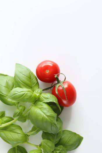 Fresh cherry tomatoes on white background, green basil. Vertical flat lay, top view, copy space. Menu template