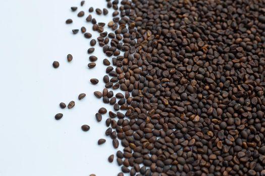 Black seed of morning glory