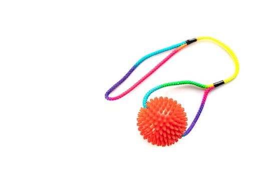 Dog toy. Ball with colorful cotton rope for games isolated on white background with copy space.