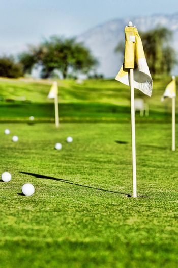 Photo of Golf ball on practice putting green