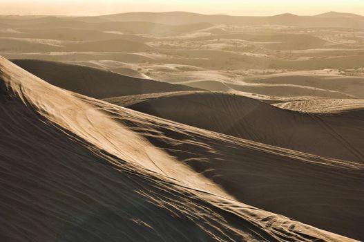Photo of ATV Tracks on Sand Dunes