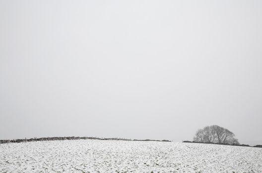 Distant view of snowy fields