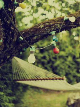 Garden lights on trees