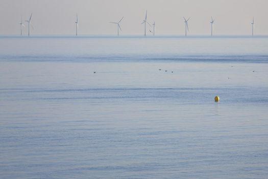 Wind farm in ocean
