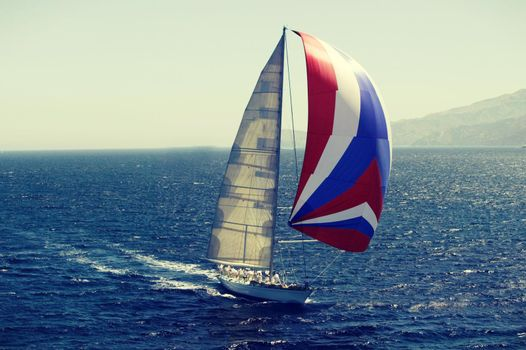 Sailboat in race on the ocean