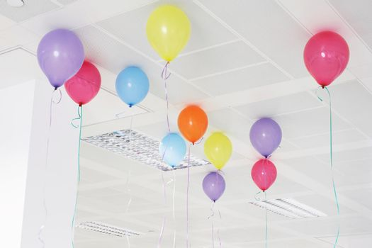 Multi coloured helium balloons on the ceiling