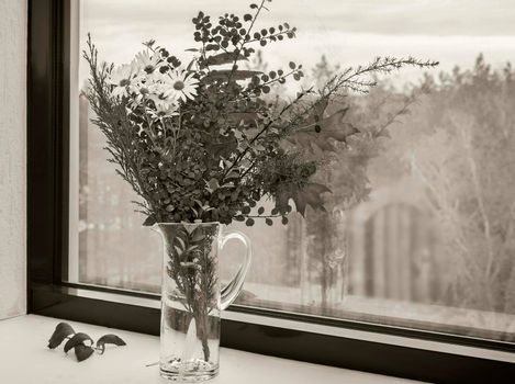 On the window sill in a glass decanter beautiful autumn bouquet of flowers and bright autumn leaves. Black and white image.