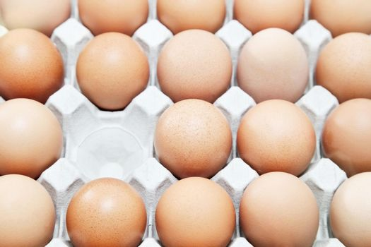 Rows of eggs with one missing