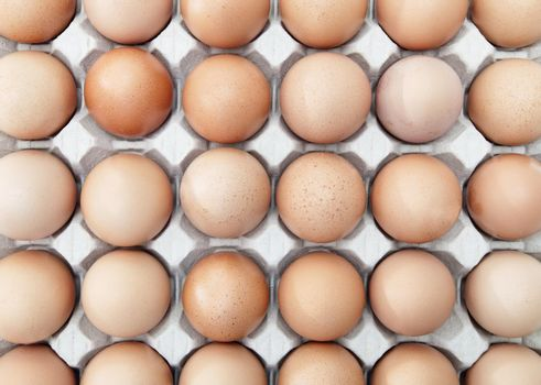 Rows of eggs