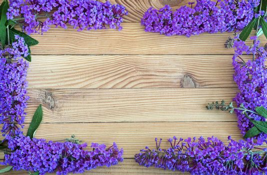 Beautiful inflorescence decorative shrub buddleja Davidii, consisting of many small lilac flowers on a light wooden background. Arranged in a frame.