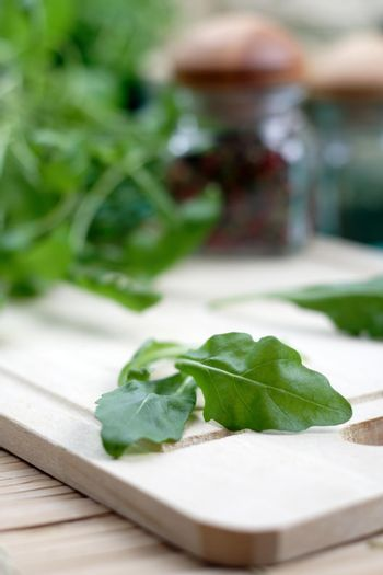 Close-up of fresh rucola - studio shot