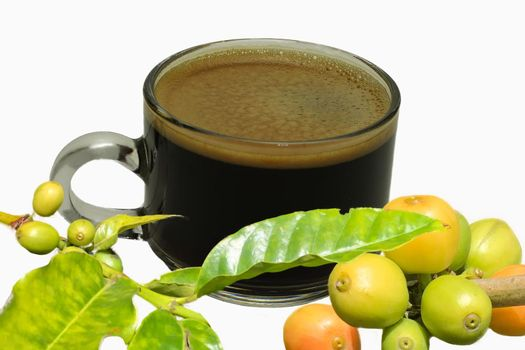 Espresso coffee cup with raw beans isolated on white background.