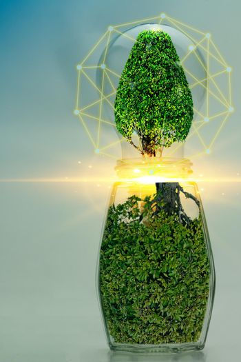 Abstract jar and light bulb green plant energy concept for environmental conservation.