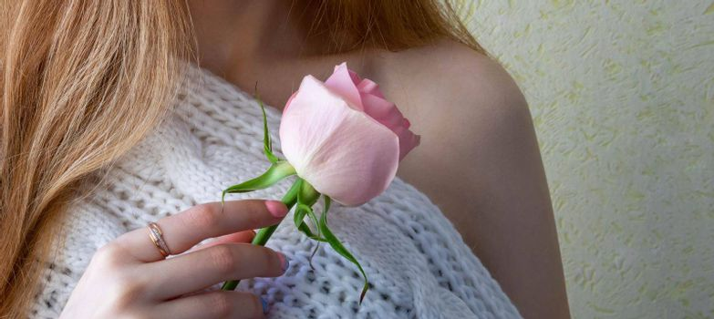 Hands of a young girl holding a pink rose.