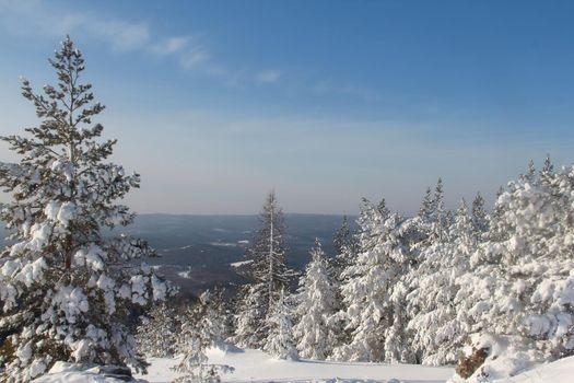 Winter snow mountain landscape with pine trees at ski resort Abzakovo region, Russia, sunny day
