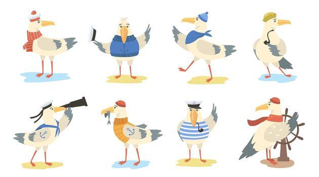 Cartoon seagull set
