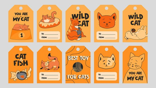 Orange special tag designs with cute kittens