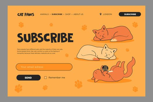 Vivid email subscription design with lovely cats