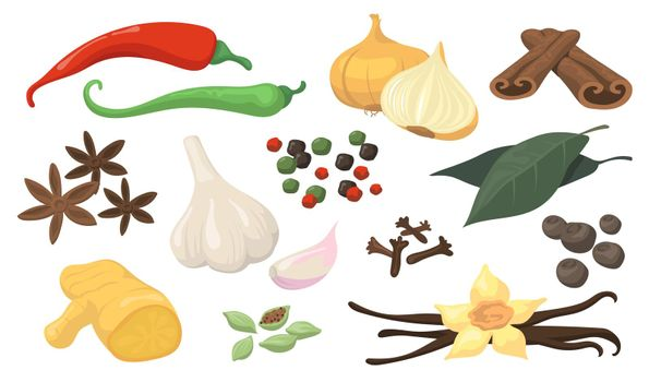 Colorful spicy spices and vegetables flat item set
