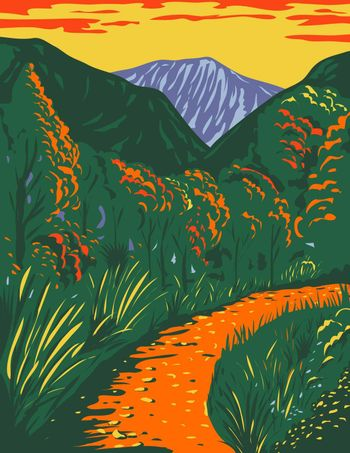 WPA poster art of McKittrick Canyon trail, a scenic canyon within the Guadalupe Mountains National Park in New Mexico during fall done in works project or administration federal art project style.