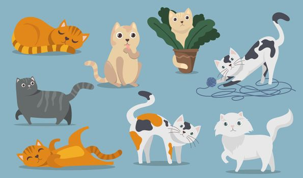 Playful cute cats flat item set
