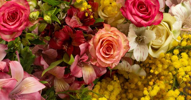 Flowers border composition in bright yellow red colours. Alstroemeria, roses, mimosa flowers. Flat lay top view, copy space