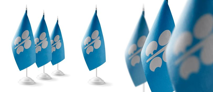 Set of Organization of the Petroleum Exporting Countries national flags on a white background
