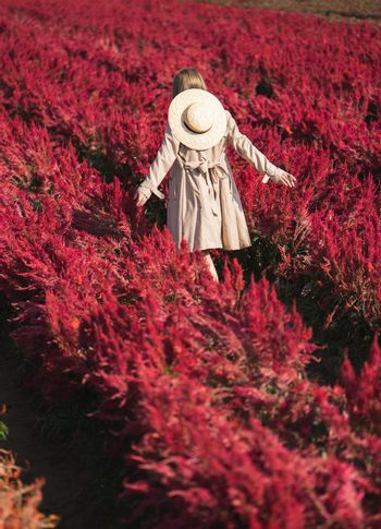 Back side of woman in trench coat and straw hat  walking in the red flower field.