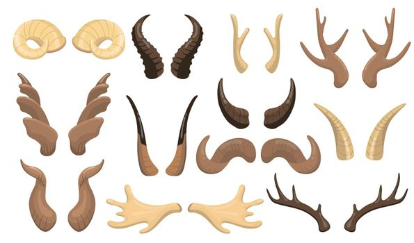 Horns and antlers set