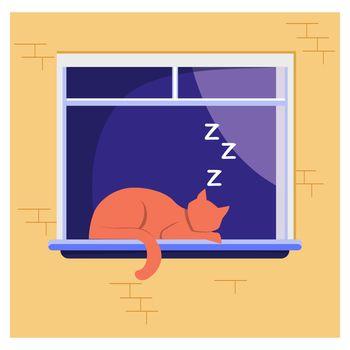 Sleeping cat lying on window