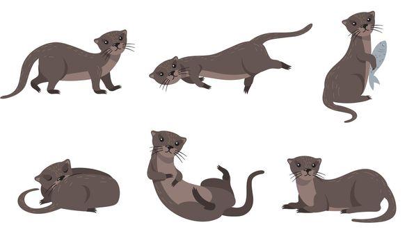 Cute weasel set